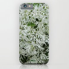 TEXTURES: White on Green iPhone 6s Slim Case