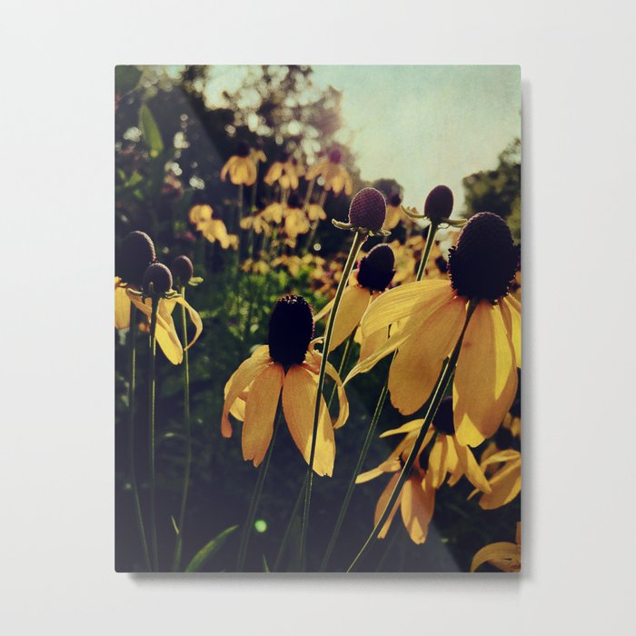 Sunshine and Flowers Metal Print