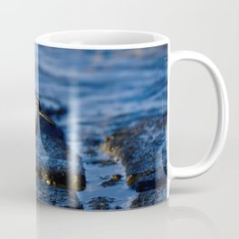 Wandering Tattler on the Rocks Coffee Mug