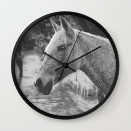 Horse IV _ Photography Wall Clock