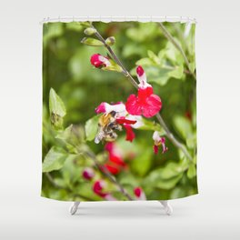 Busy bee in the flowers Shower Curtain