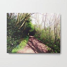 Shadowed Path Metal Print