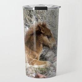 Salt River Colt Taking a Rest Travel Mug