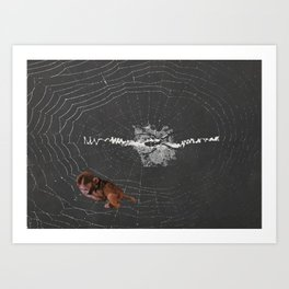 baby monkey clinging to spider web old science book photos collage by cecilia lee Art Print