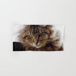 Maine Coon Cat Hand & Bath Towel