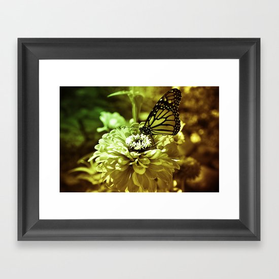Butterfly on Flower - Color Framed Art Print