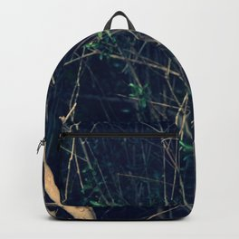 The darkness Backpack