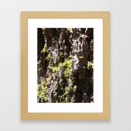 the pitted exterior Framed Art Print