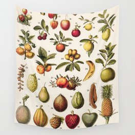 Adolphe Millot - Fruits exotiques - French vintage botanical illustration Wall Tapestry