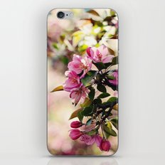 Ode to Spring iPhone & iPod Skin