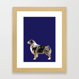 Australian Shepherd #4 Framed Art Print