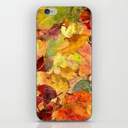 The Fall Forest Floor iPhone Skin