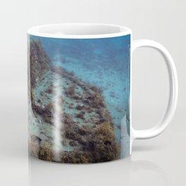 Shipwreck Coffee Mug