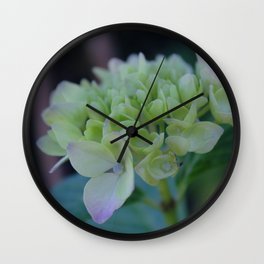 Flowers in San Fransisco Wall Clock