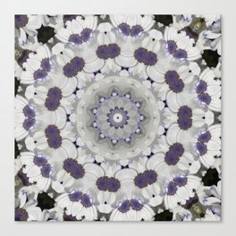 Flowers Purple and white Canvas Print