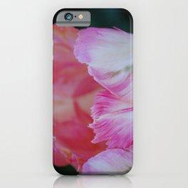 Tulips 4 iPhone Case