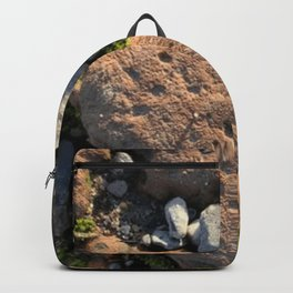 Heart of Stone Backpack