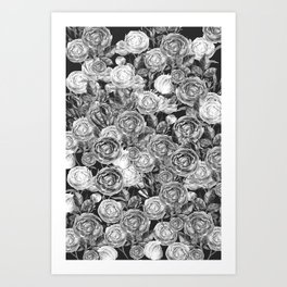 Vintage Roses Black And White Art Print