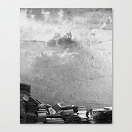 The book store Canvas Print