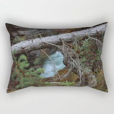 Untitled V Rectangular Pillow