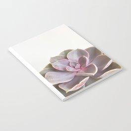 Purple Succulent Notebook