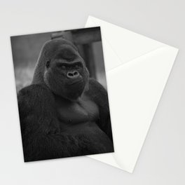 Oumbi The Silverback Gorilla Stationery Cards