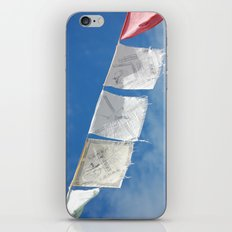 Flags in the Breeze iPhone & iPod Skin