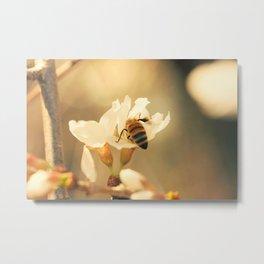 April Honeybee Metal Print