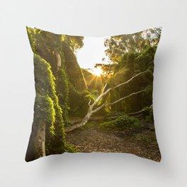 Perth's Secret Garden Throw Pillow