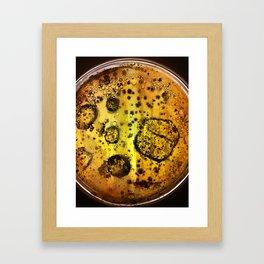 Bacteria I Framed Art Print