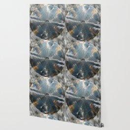 Pyxis Wallpaper
