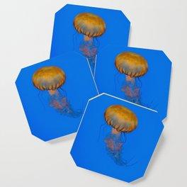 Jelly Coaster