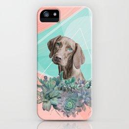 Eclectic Geometric Redbone Coonhound Dog iPhone Case