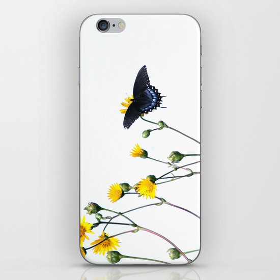 Butterfly Prairie iPhone & iPod Skin