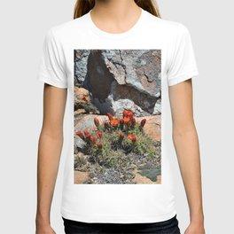 Cactus in a Texas Desert T-shirt