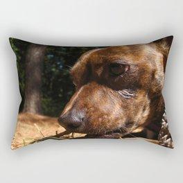 Chiweeny Stick Rectangular Pillow