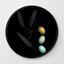 Feathers and Eggs Wall Clock