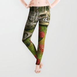 Looking Glass Leggings