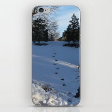 Footsteps iPhone & iPod Skin