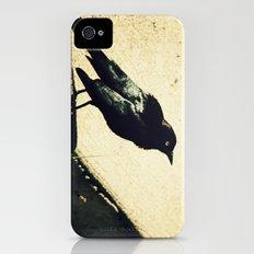 Little Blackbird iPhone (4, 4s) Slim Case