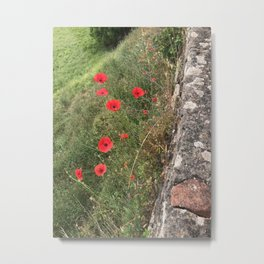 Florentine Poppies Metal Print