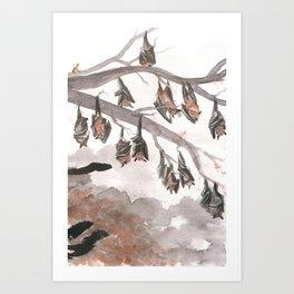 Thirteen Bats Art Print