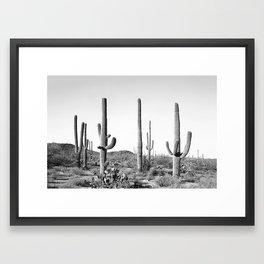Grey Cactus Land Framed Art Print