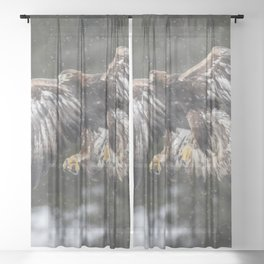 Eagle In The Snow. Sheer Curtain