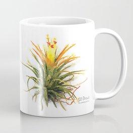 Tillandsia Druid Air Plant Watercolors Coffee Mug