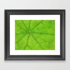Green Leaf Veins 03 Framed Art Print
