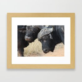 Fight for the Lead Framed Art Print