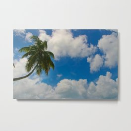 Tropical Palm with Blue Skies Metal Print