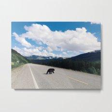Black Bear Crossing Metal Print