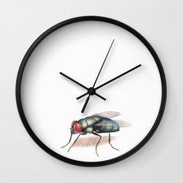 Fly by Lars Furtwaengler | Colored Pencil / Pastel Pencil | 2011 Wall Clock
